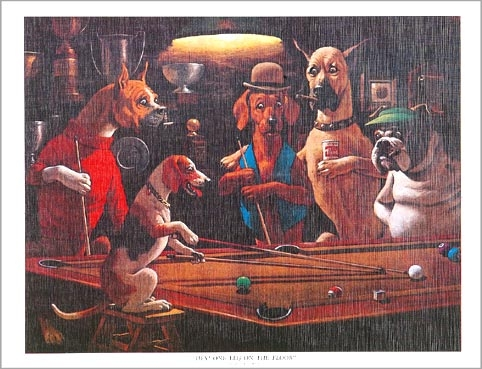 BA0858: poster honden #3