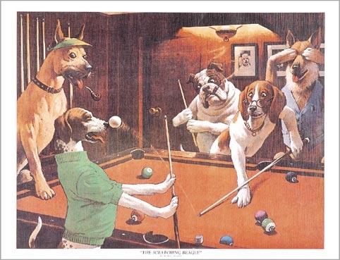 BA0858: poster honden #6